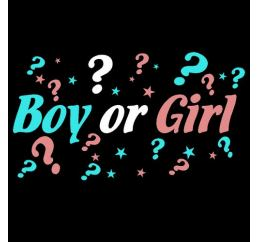 Набор наклеек BOY or GIRL