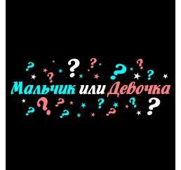 Набор МАЛЬЧИК или ДЕВОЧКА